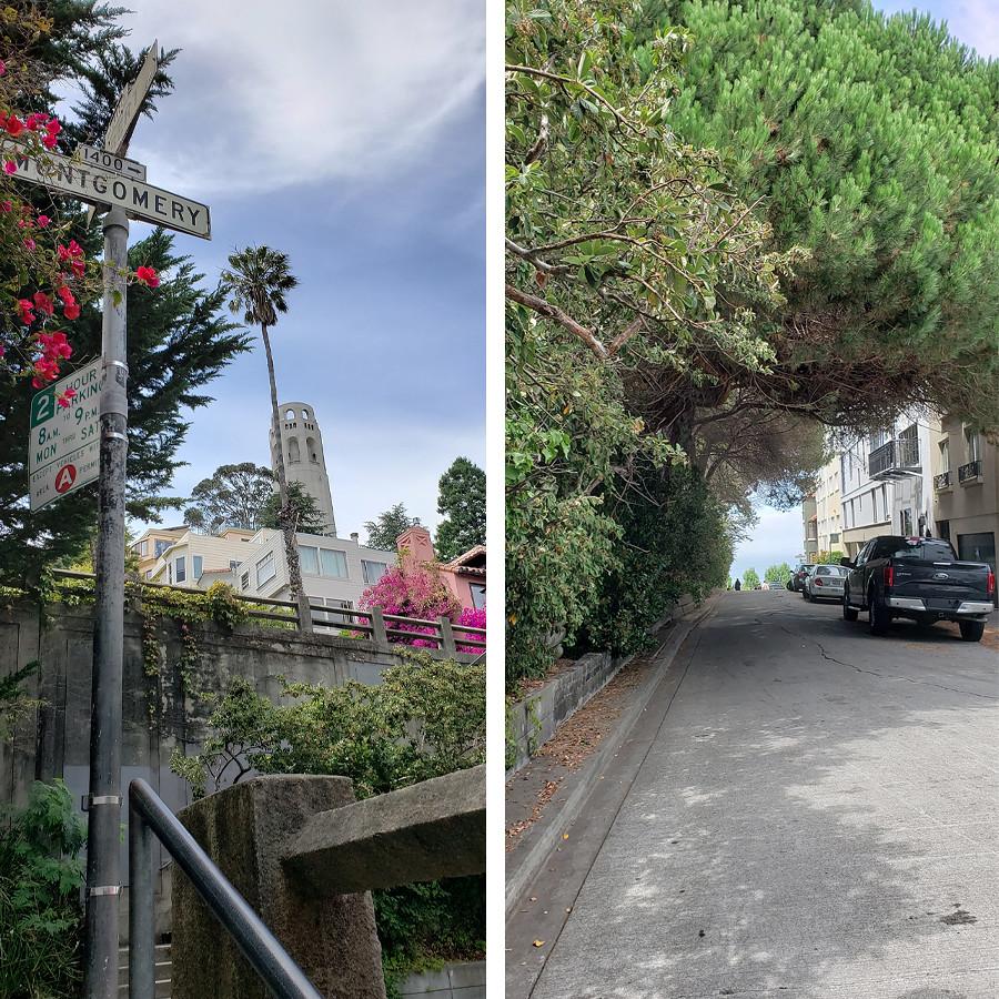 filbert-street-stairs-5