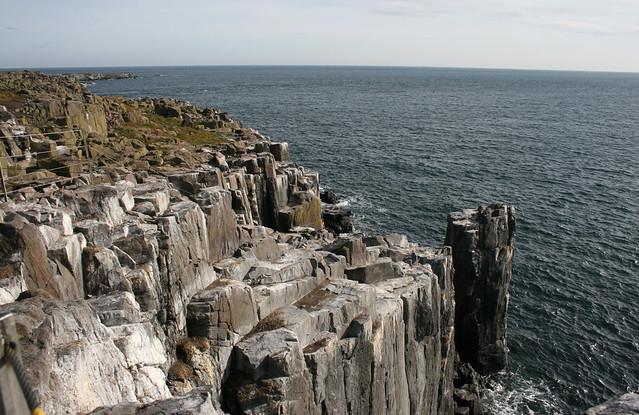 The coast of Inner Farne