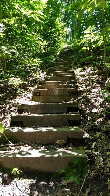 Stairs for the Eagle Bluffs Overlook Trail