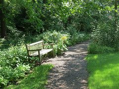 inviting bench