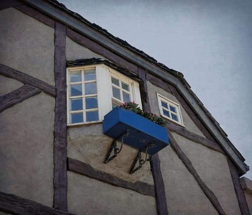 windows melbourne majesticprincess blue building architecture outside outdoor fenster australia victoria architektur planter gebäude sassafras planterbox balkonkasten 002885 windowwednesdays wednesdaywalls rx100m6 topazstudio2