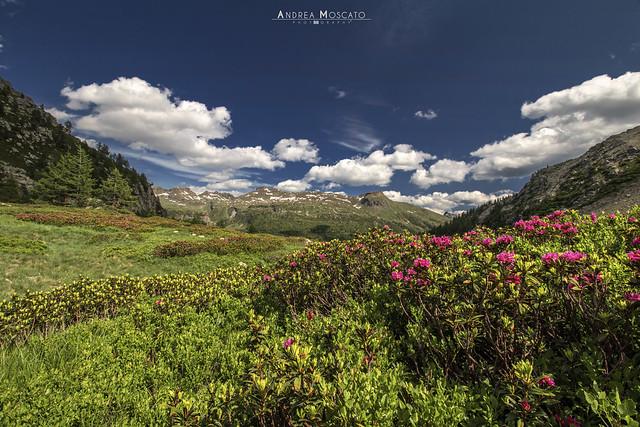 Alpe Valdeserta - Parco Naturale Alpe Devero (Italy)