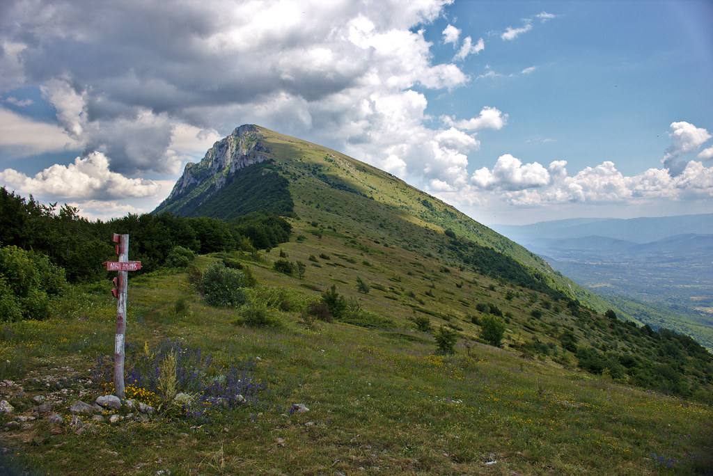 Uspon, Trem, Suva planina, planinarenje, Srbija, turizam, fotografija planine, fotografije planina, fotografija suve planine, fotografije trema,  uspon, planinarski marker, turizam srbija, staza ka tremu