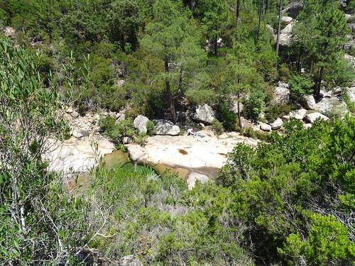 Vasques du Carciara : dans la remontée vers le chemin aval du Carciara