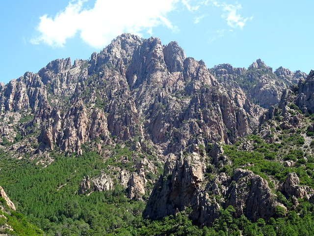 Descente du Chemin de Paliri : sur le plateau de cistes/bruyères en vue de Punta di Monte Sordu