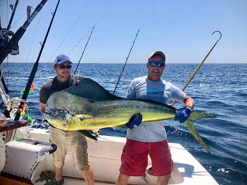 Photo of angler with state record 72.8 lb. dolphinfish