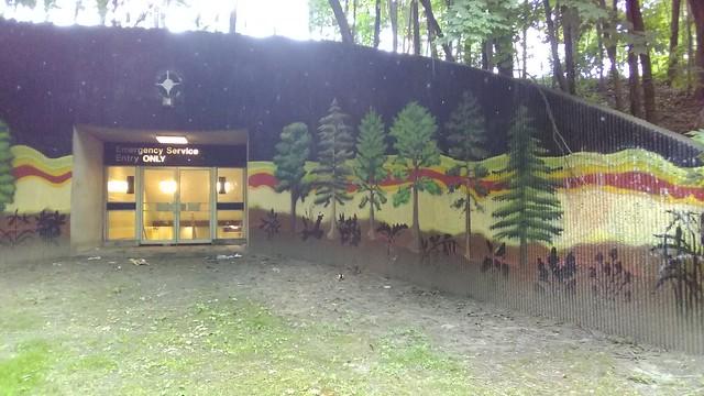 """Emergency Service Entry ONLY"" (5) #toronto #casaloma #nordheimerravine #stclairwest #forest #grass #publicart #mural"