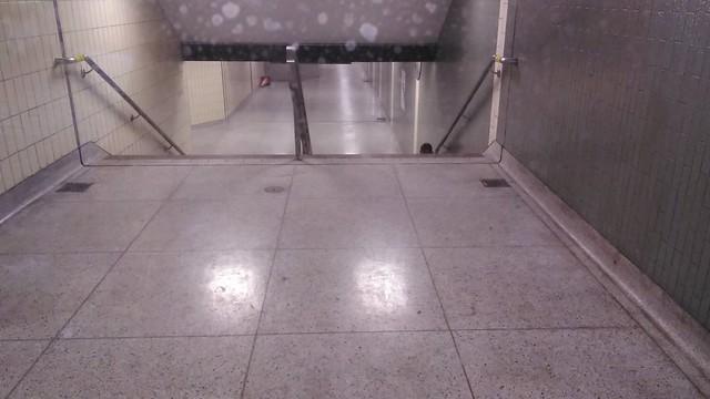 """Emergency Service Entry ONLY"" (1) #toronto #casaloma #nordheimerravine #stclairwest #window #stairs"