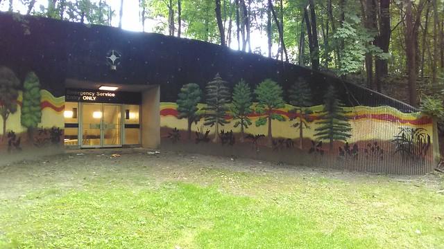 """Emergency Service Entry ONLY"" (1) #toronto #casaloma #nordheimerravine #stclairwest #forest #grass #publicart #mural"