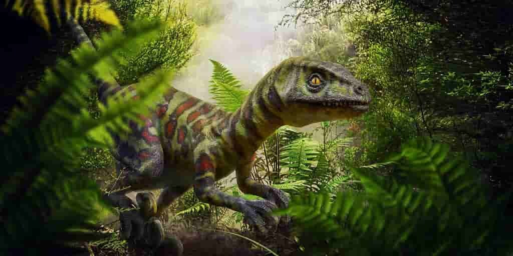 les-oiseaux-ont-leurs-couleurs-grâce-aux-dinosaures.