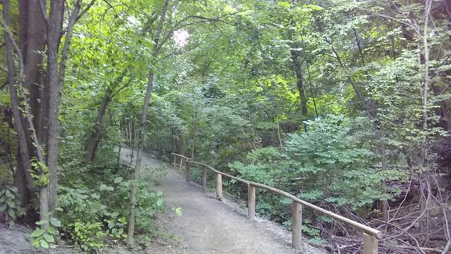 Path #toronto #casaloma #nordheimerravine #path #latergram
