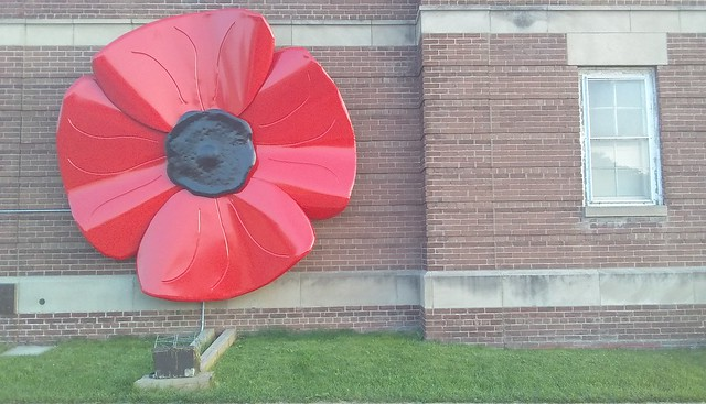Poppy #toronto #red #poppy #sculpture #publicart #royalcanadianlegion #royalcanadianlegion344 #lakeshoreblvd