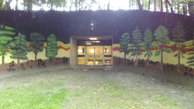 """Emergency Service Entry ONLY"" (6) #toronto #casaloma #nordheimerravine #stclairwest #forest #grass #publicart #mural"
