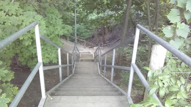 Down the stairs #toronto #casaloma #nordheimerravine #stairs #latergram