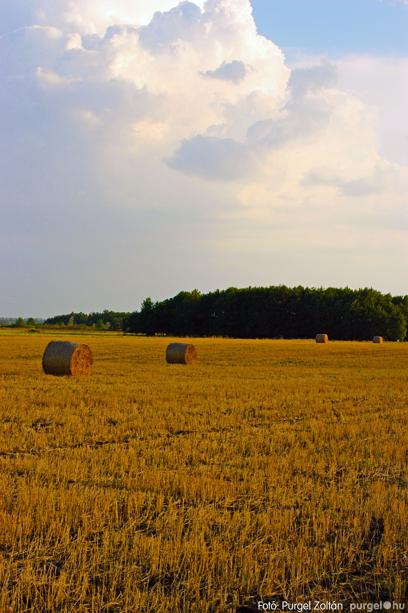 2003.08.01. 001 Naplemente előtt a Holt-Tiszán - Fotó:PURGEL ZOLTÁN© DSC_0001q.jpg
