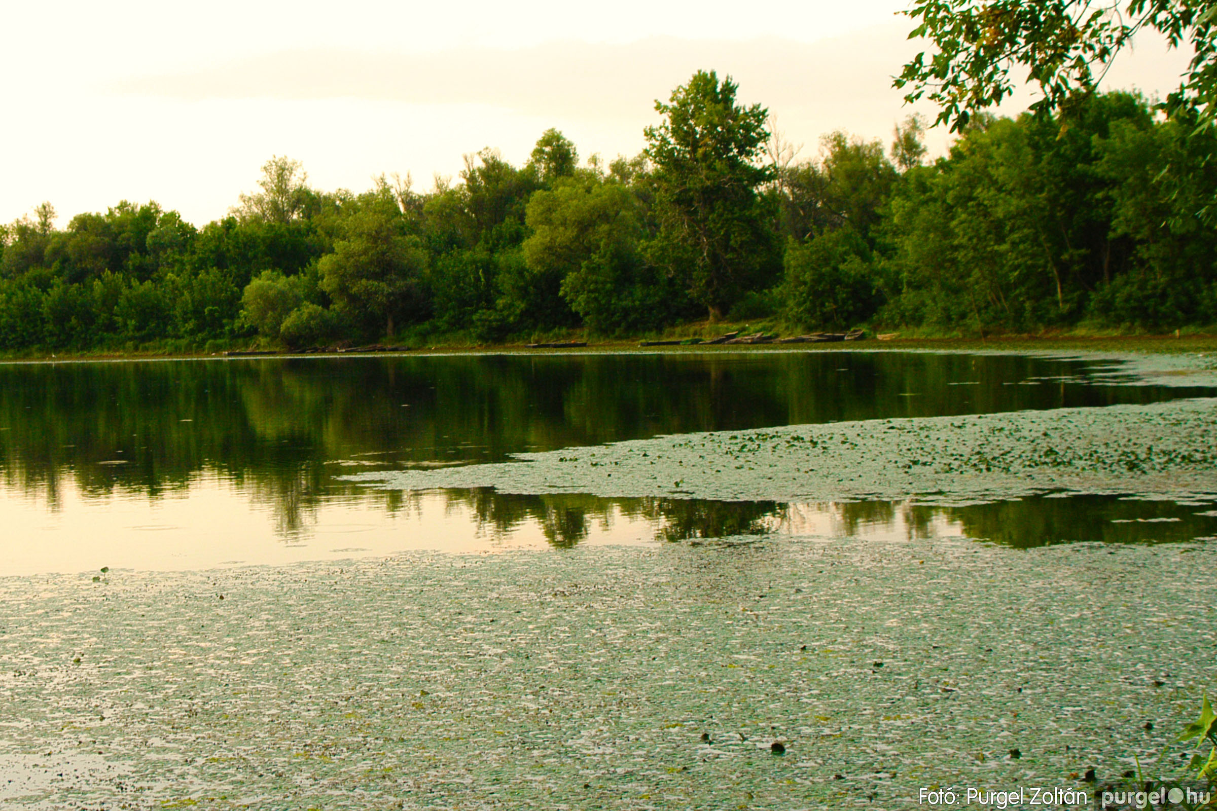 2003.08.01. 010 Naplemente előtt a Holt-Tiszán - Fotó:PURGEL ZOLTÁN© DSC_0017q.jpg