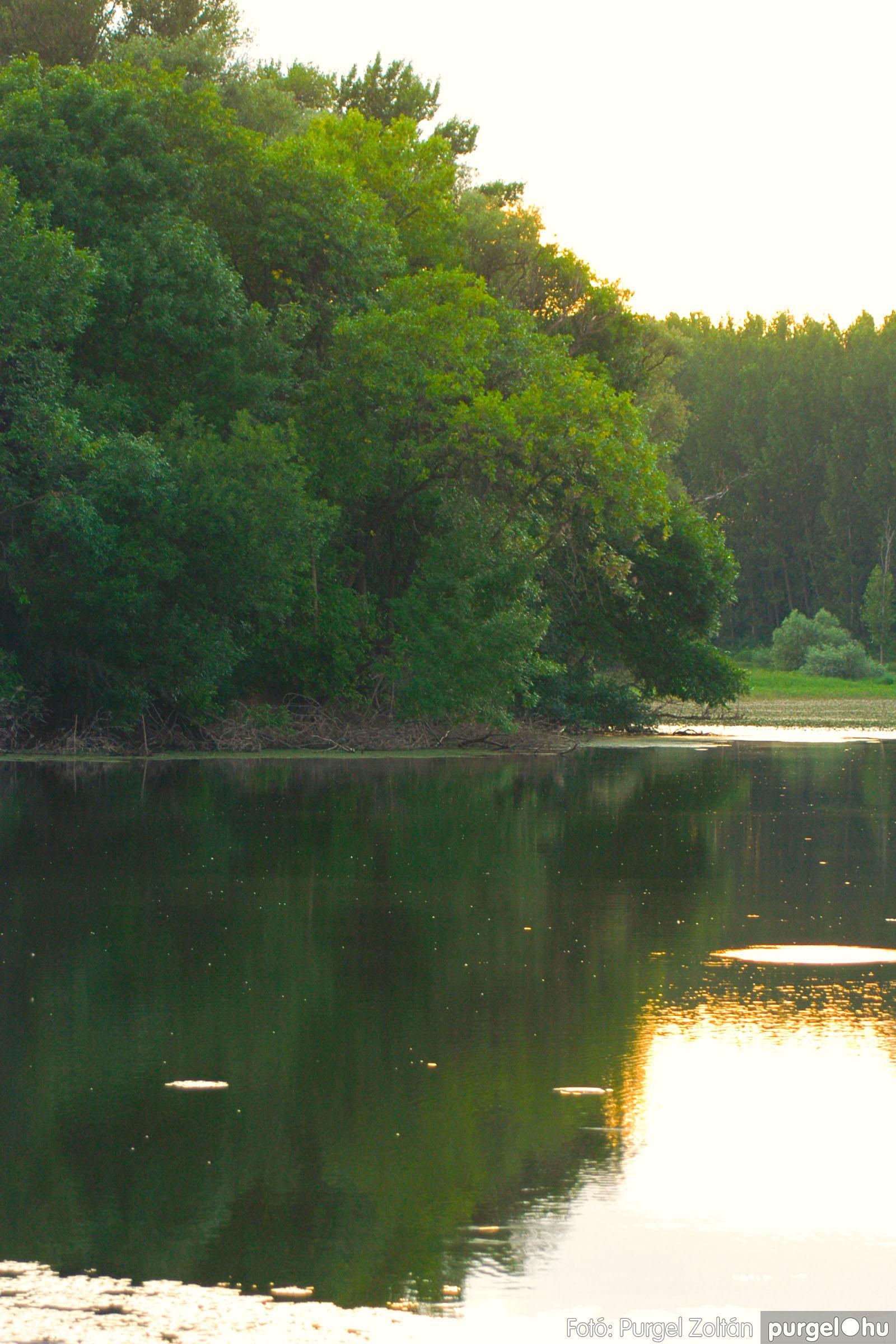 2003.08.01. 016 Naplemente előtt a Holt-Tiszán - Fotó:PURGEL ZOLTÁN© DSC_0032q.jpg