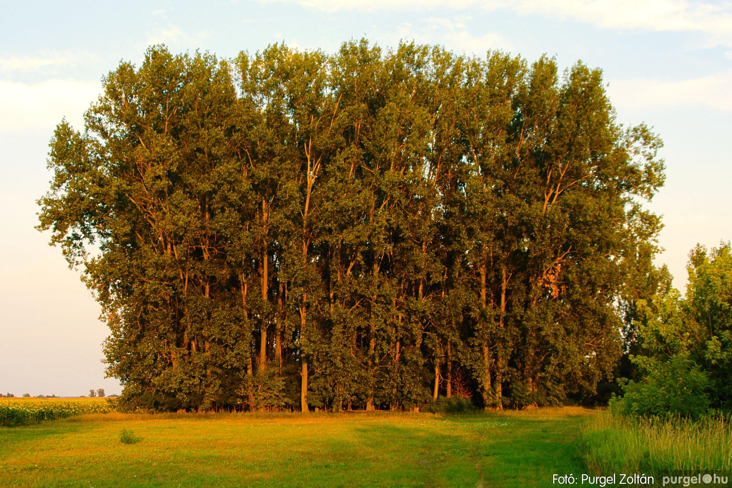 2003.08.09. 015 Augusztusi napnyugta a Lándoron - Fotó:PURGEL ZOLTÁN© DSC_0021q.jpg