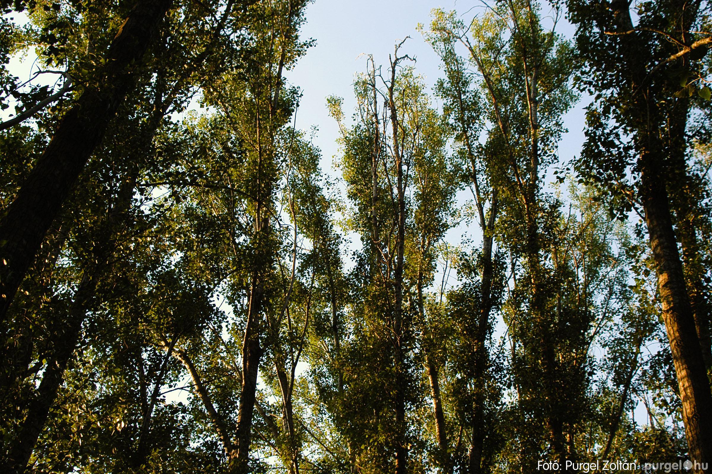 2003.08.09. 005 Augusztusi napnyugta a Lándoron - Fotó:PURGEL ZOLTÁN© DSC_0006q.jpg