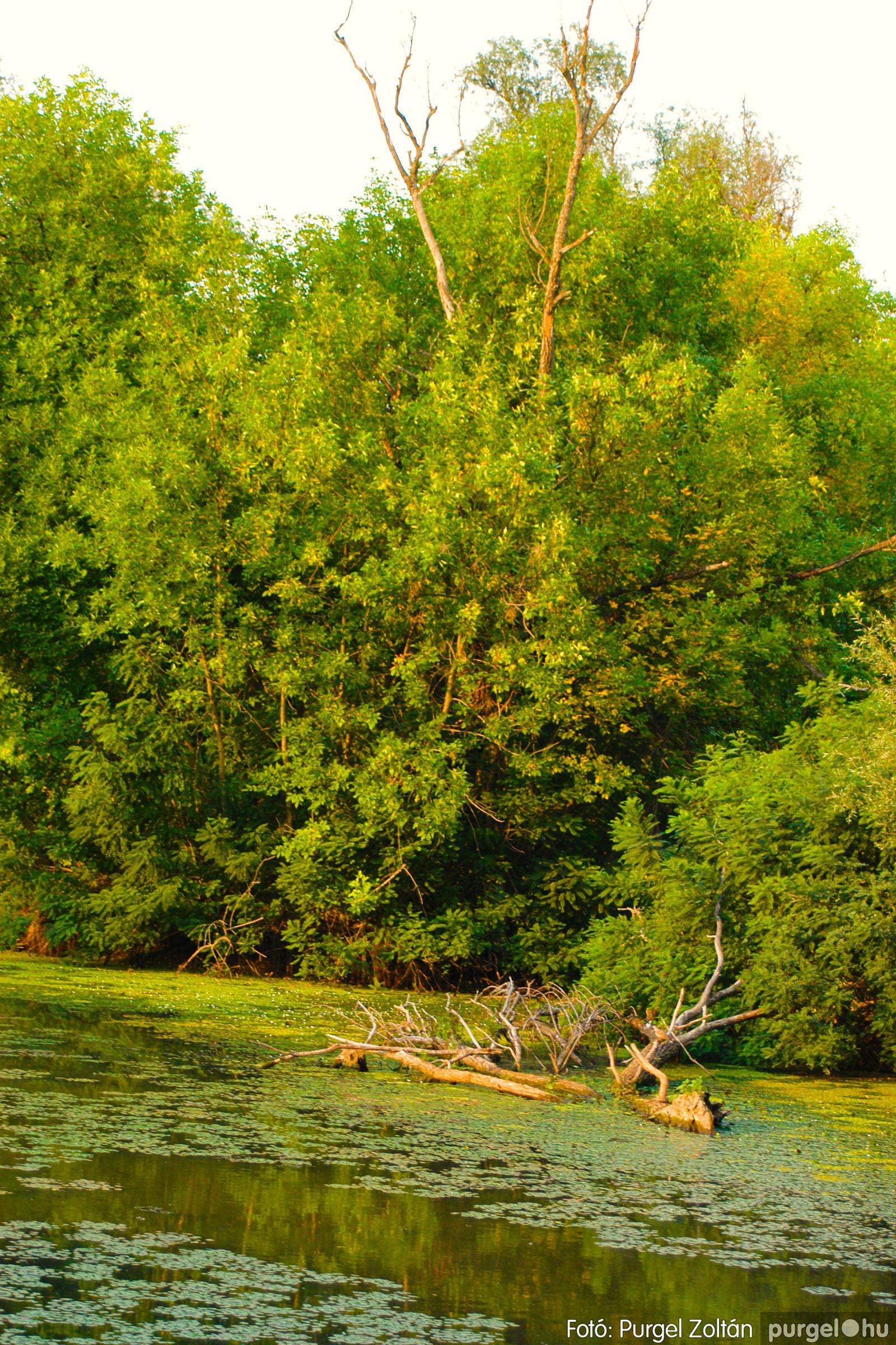 2003.08.01. 006 Naplemente előtt a Holt-Tiszán - Fotó:PURGEL ZOLTÁN© DSC_0007q.jpg