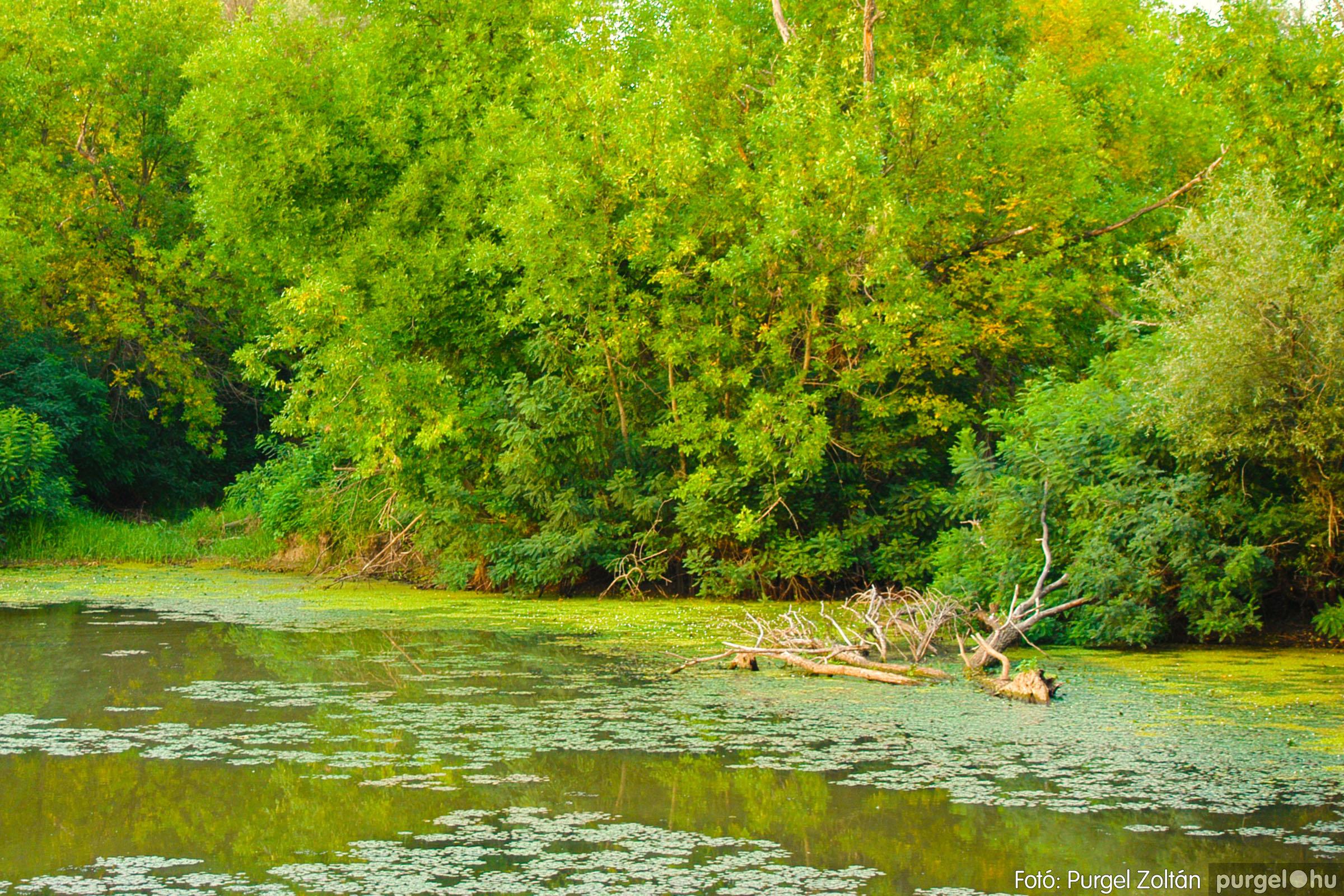 2003.08.01. 007 Naplemente előtt a Holt-Tiszán - Fotó:PURGEL ZOLTÁN© DSC_0010q.jpg