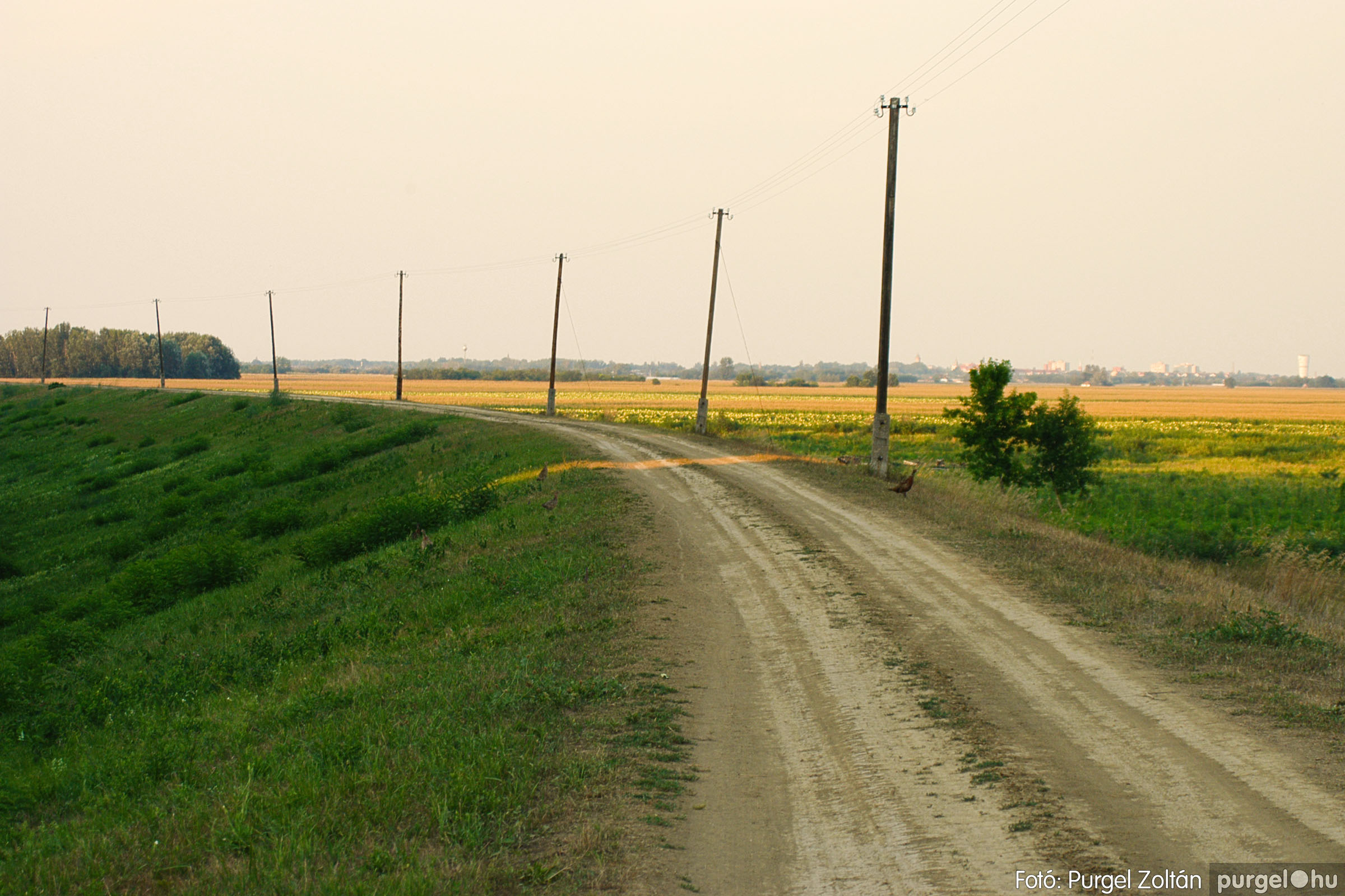 2003.08.09. 011 Augusztusi napnyugta a Lándoron - Fotó:PURGEL ZOLTÁN© DSC_0016q.jpg