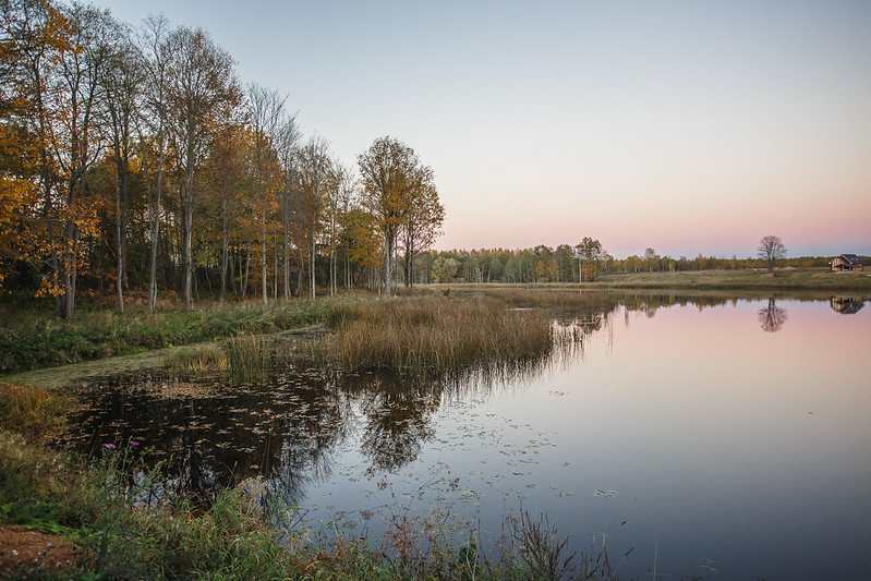 bessonovo_18-10-11_12