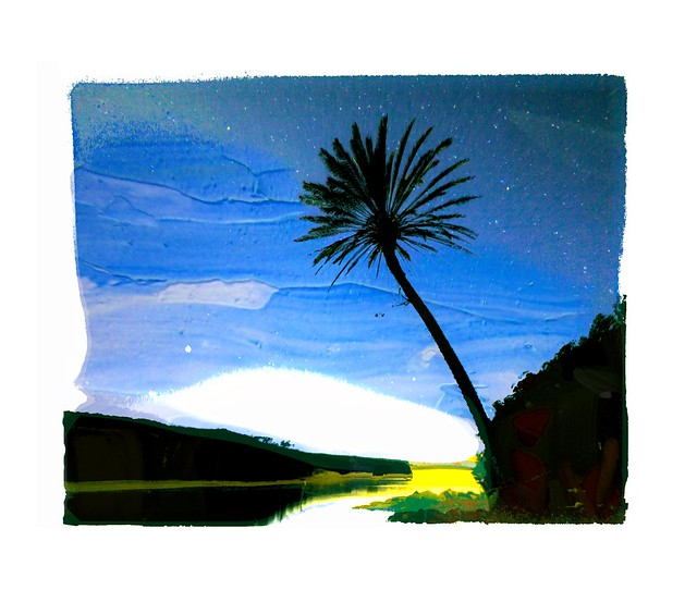 EARLY MORNING - FLORIPA