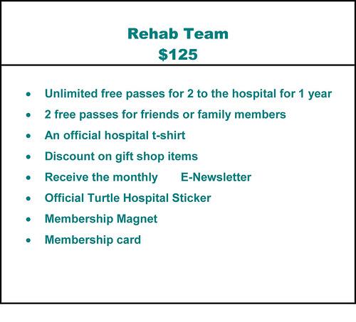 Rehab Team