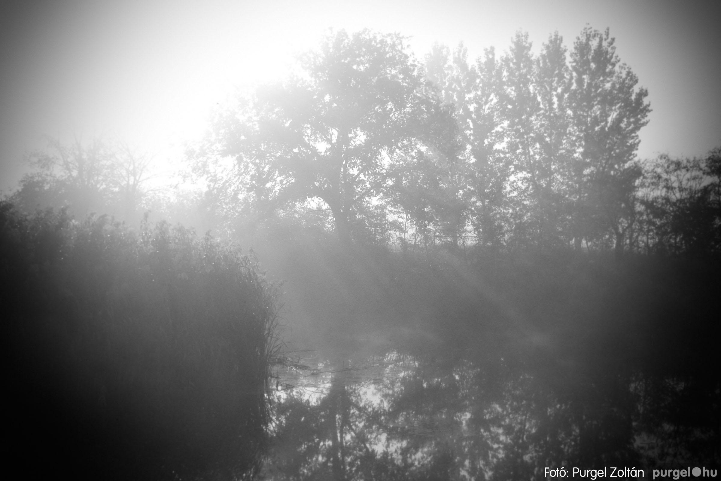 2003.11.09. 008 Őszi fények a Csordajáráson - Fotó:PURGEL ZOLTÁN© DSC_0025q.jpg