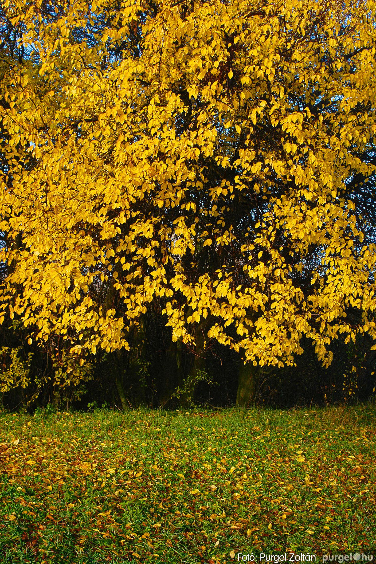 2003.11.09. 004 Őszi fények a Csordajáráson - Fotó:PURGEL ZOLTÁN© DSC_0018q.jpg