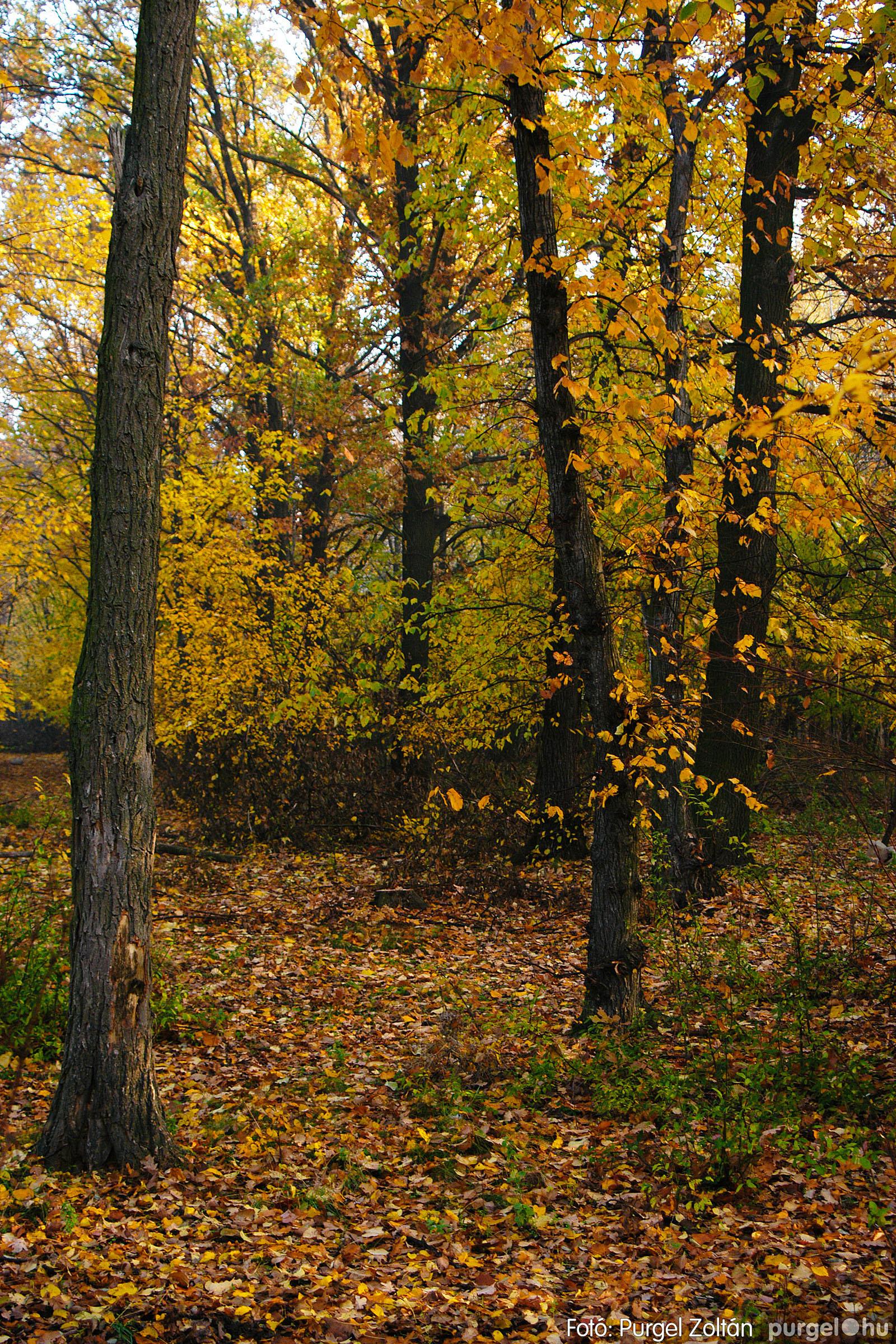 2003.11.09. 012 Őszi fények a Csordajáráson - Fotó:PURGEL ZOLTÁN© DSC_0032q.jpg