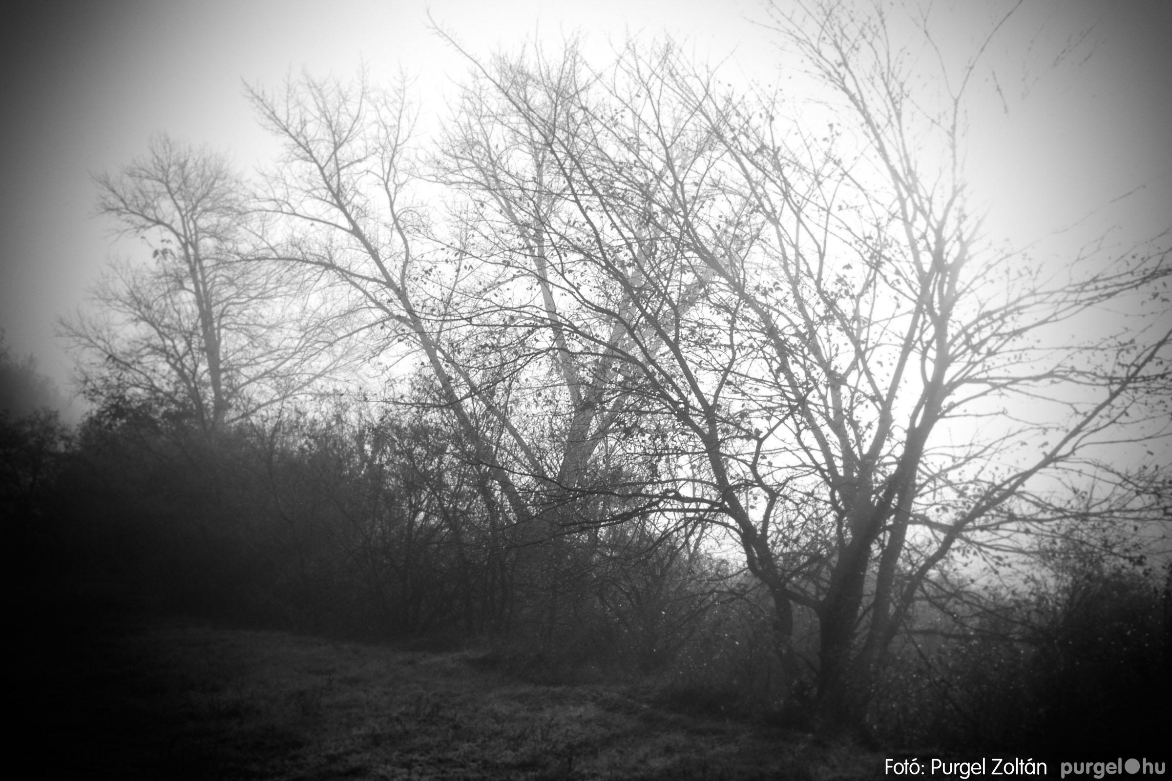 2003.11.09. 010 Őszi fények a Csordajáráson - Fotó:PURGEL ZOLTÁN© DSC_0028q.jpg