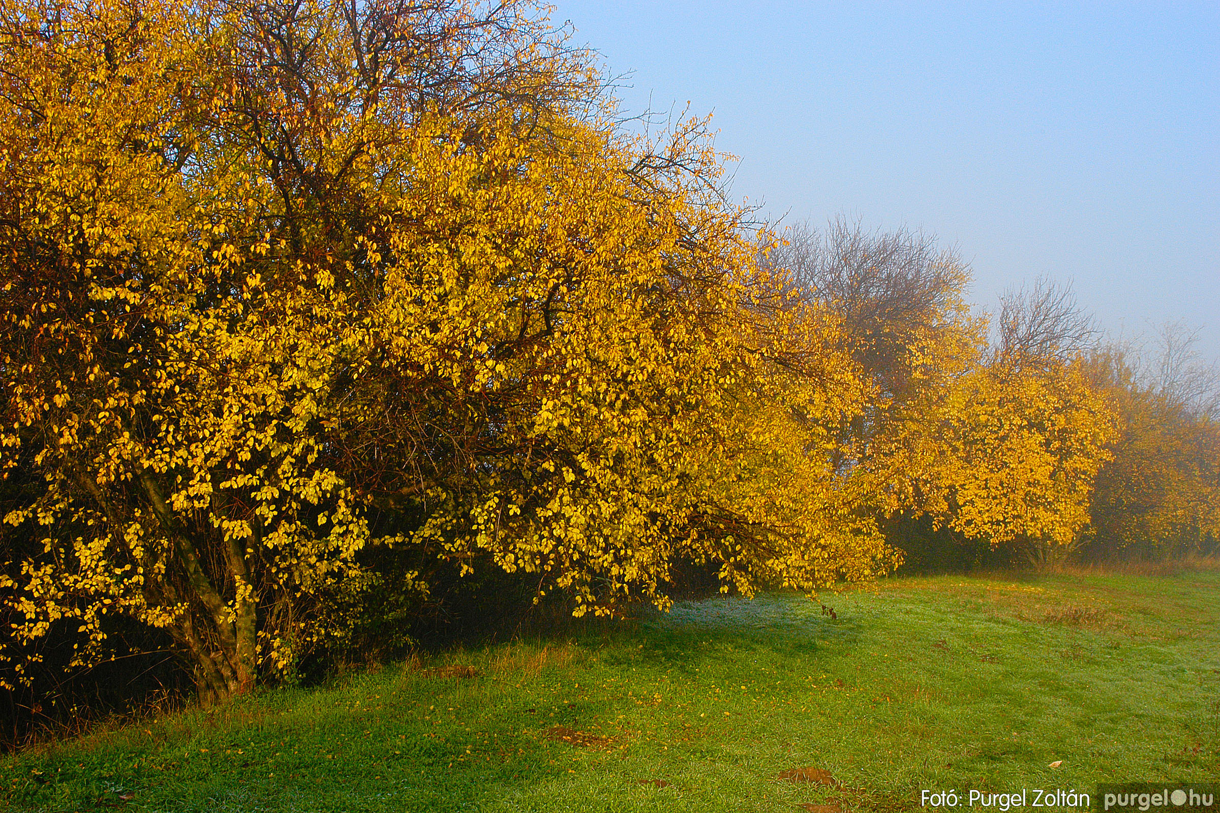 2003.11.09. 006 Őszi fények a Csordajáráson - Fotó:PURGEL ZOLTÁN© DSC_0021q.jpg