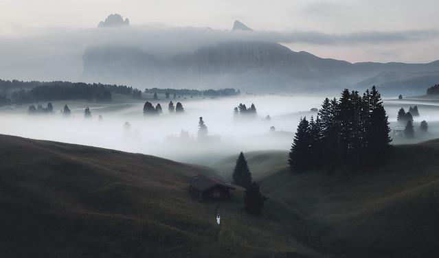 A mystical morning
