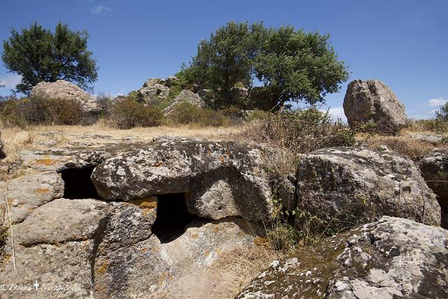 parco archeologico di Pranu Mutteddu, Goni