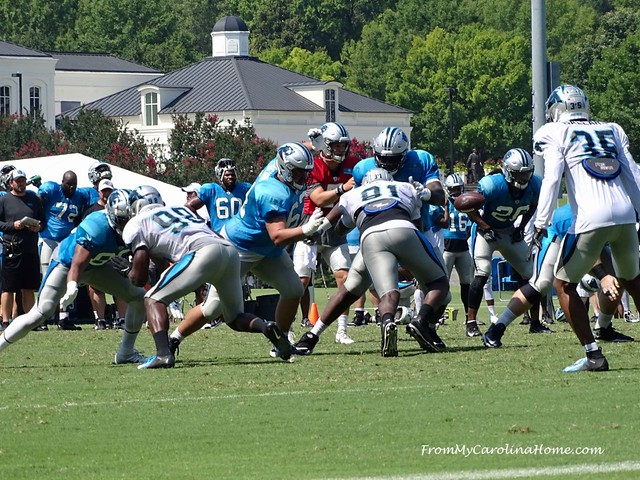 Panthers Training Camp 2019 at FromMyCarolinaHome.com