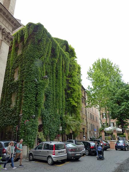 mur végétal rome
