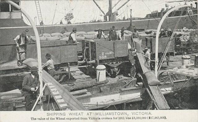 Shipping wheat at Williamstown, Victoria - circa 1912