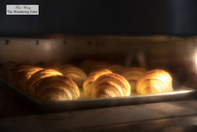 Croissants baking in the oven