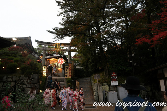 things to do in Kyoto (autumn) (96)