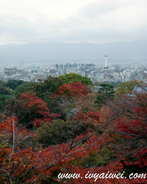 things to do in Kyoto (autumn) (94)