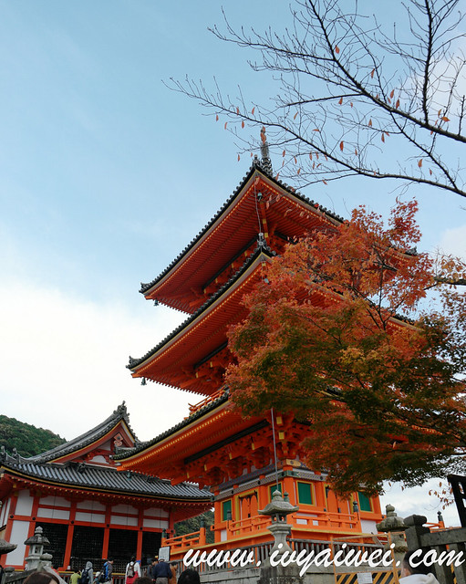 things to do in Kyoto (autumn) (92)