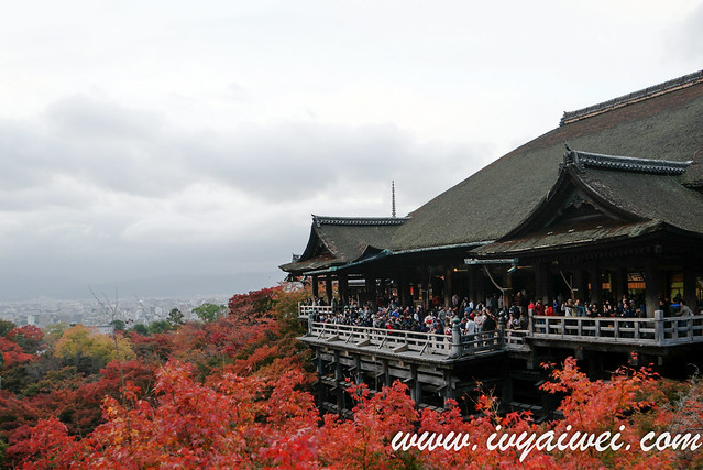 things to do in Kyoto (autumn) (99)