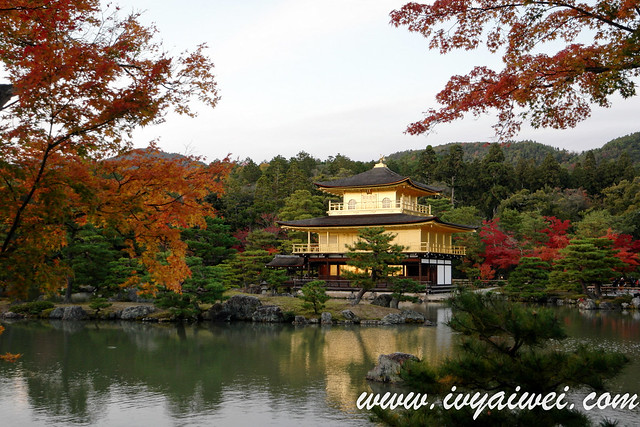 things to do in Kyoto (autumn) (16)