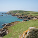Great Saltee