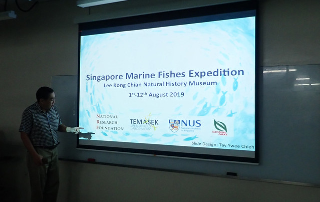 Singapore Marine Fish Expedition 2019