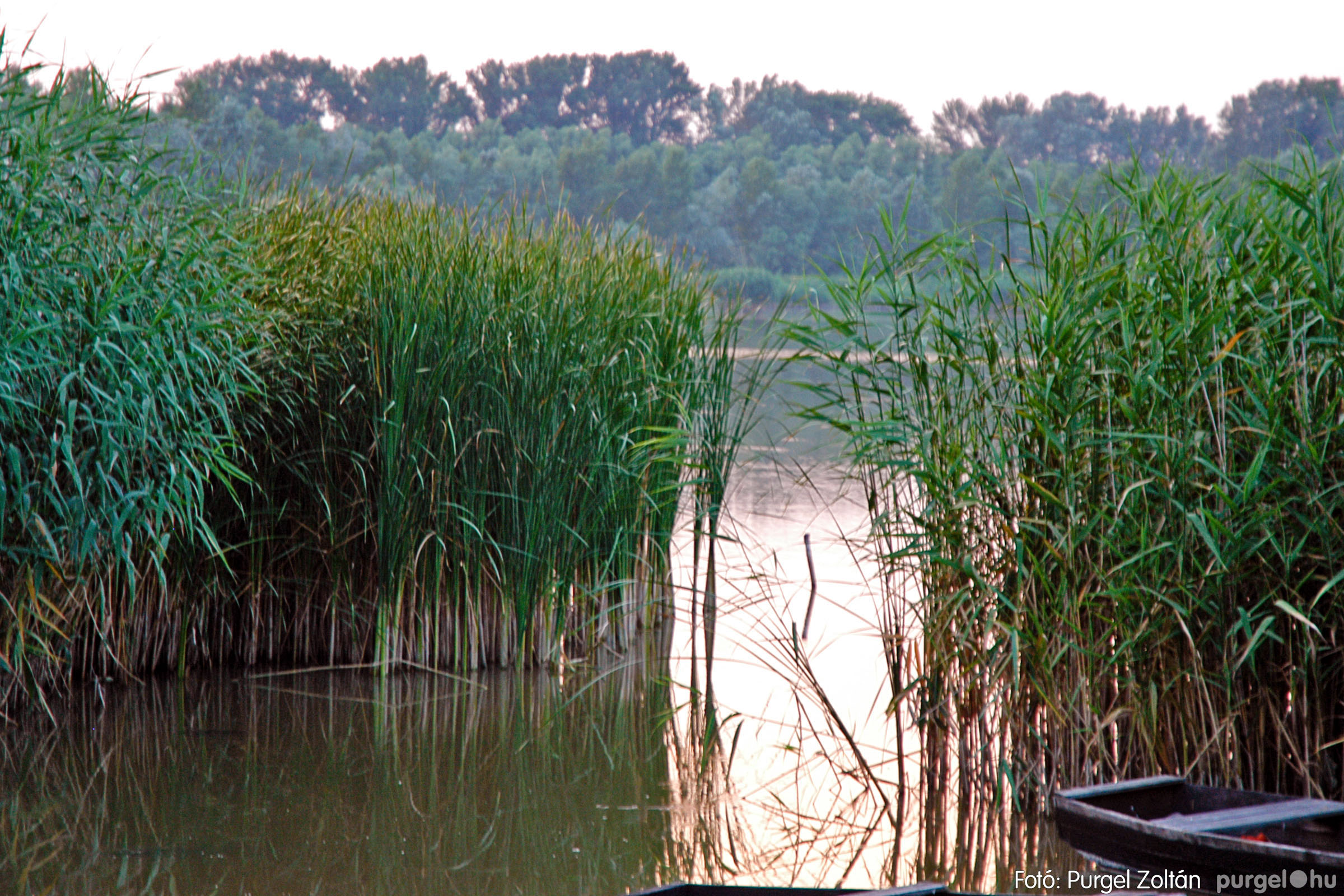 2004.07.22. 003 Nyáresti séta a Lándor-tó környékén - Fotó:PURGEL ZOLTÁN© DSC_0004q.jpg