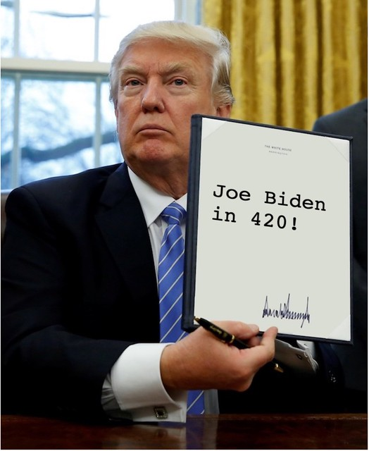 Trump_biden420