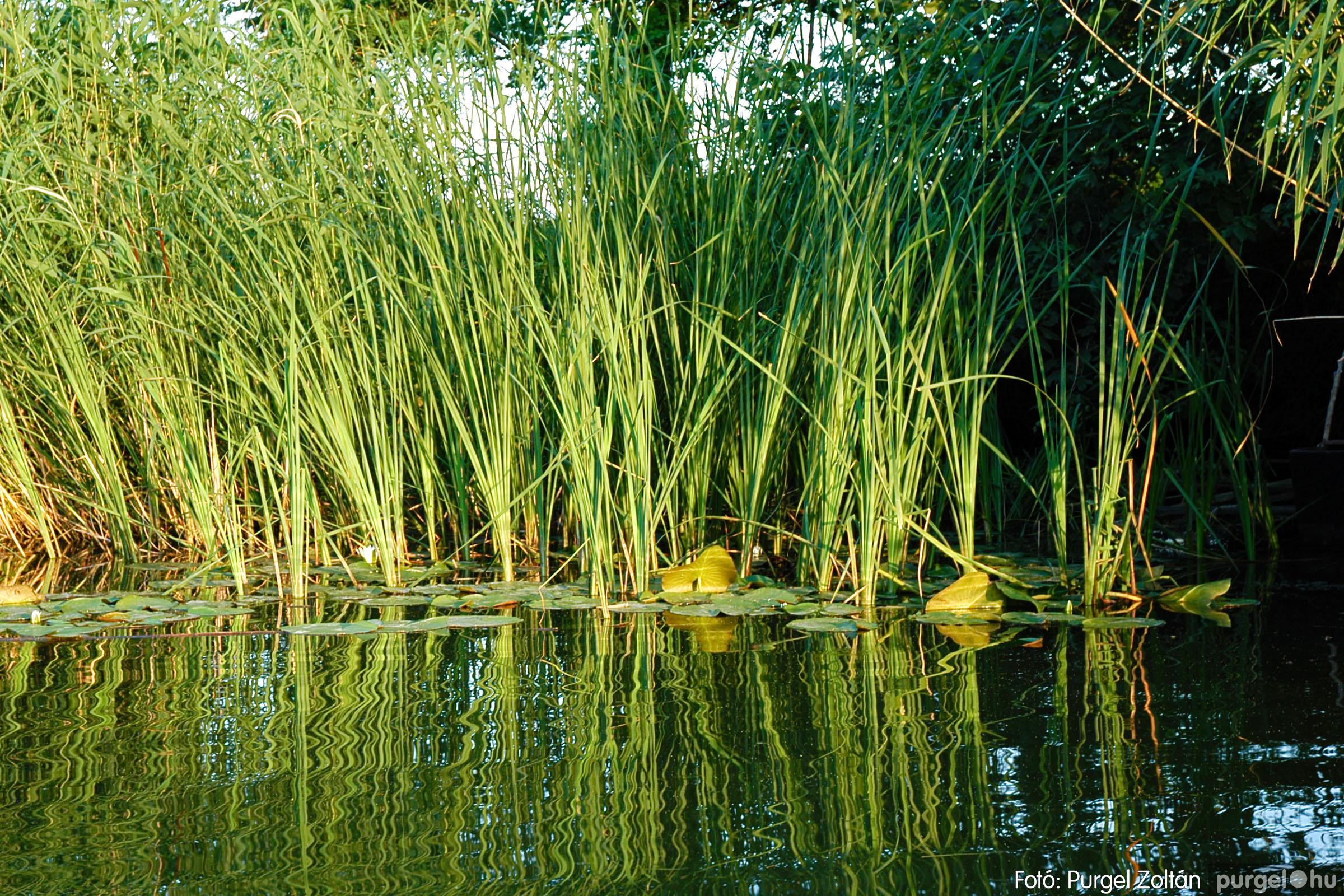 2004.06.22. 030 Csónakázás a Kurcán - Fotó:PURGEL ZOLTÁN© DSC_0068q.jpg